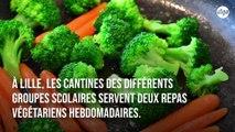 La moitié des repas servis aux enfants dans les cantines de Lille sont végétariens
