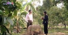 Tiếng sét trong mưa tập 9 full trọn bộ live - THVL1 Phim Việt Nam