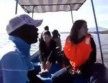 Cet hippopotame piège un bateau de touristes !