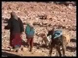 Faut pas rever Maroc de l' Atlas a' l' Atlantique