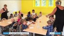 Cantines scolaires : un repas végétarien obligatoire par semaine