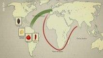 Le dessous des cartes. Alimentation, la mondialisation dans nos assiettes ?
