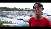 Scotland-u2019s basking sharks-u2019 secret underwater lives captured by robot