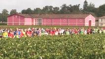 Marathon du medoc 2019 - Résumé images / short cuts
