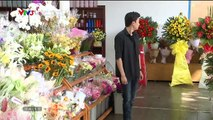 Đánh Cắp Giấc Mơ Tập 28 - Ngày 8/9/2019 - phim đánh cắp giấc mơ tập 29 - Phim Việt Nam VTV3 tập cuối - Phim Danh Cap Giac Mo Tap 28