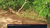 Martinique : trois jeunes emportés par la crue d'une rivière