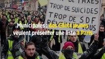 Municipales : des Gilets jaunes veulent présenter une liste à Paris