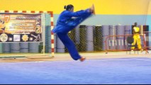 Wushu in Africa: 11 countries take part in Senegal championship