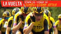 Les espions de la Jumbo Visma / My name is Jumbo, Jumbo-Visma - Étape 16 / Stage 16   La Vuelta 19