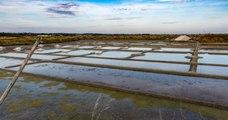 Loire-Atlantique : un dimanche placé sous le signe de l'étrange...