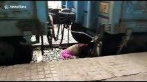 Miraculée, cette femme tombée sous un train est indemne !