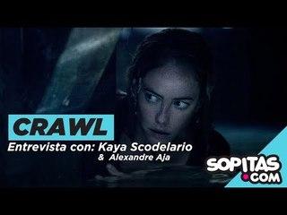 'Crawl' - un homenaje a 'Jaws' y una buena película de suspenso