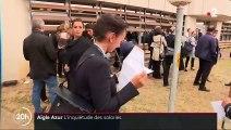 Aigle Azur : les salariés sont plus inquiets que jamais