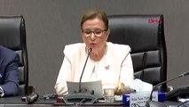 Ankara ticaret bakanı pekcan, abd ticaret bakanı ross ile ortak basın toplantısı düzenledi-2