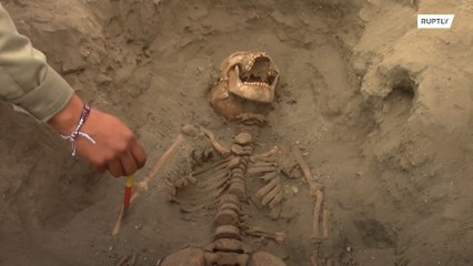 Hallan 227 esqueletos de niños sacrificados en Perú