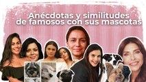 El perro de 'Calle y Poché' quiere salir en sus videos, asegura Lina Lamos