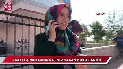 Konya'da koku paniği!