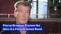 Pierce Brosnan Praises The Idea Of A Female James Bond