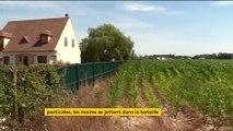 Pesticides : le glyphosate interdit dans le Val-de-Marne