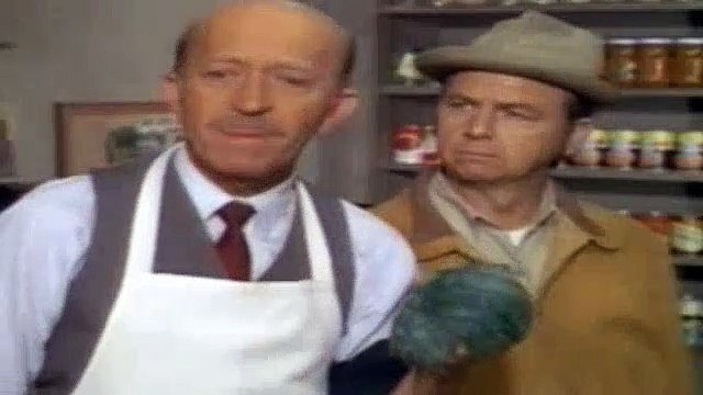 Green Acres Season 6 Episode 21 The Spot Remover
