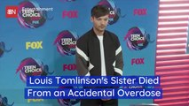 The Sad Ending For Louis Tomlinson's Sister