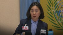 Billionaire Pansy Ho tells UN human rights body she feels repressed by Hong Kong protests