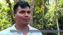 La lucha de los amahuacas por sobrevivir en la Amazonía de Perú
