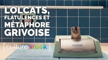 Culture Week by Culture Pub :  lolcats, flatulences et métaphore grivoise