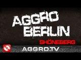 AGGRO BERLIN 'RAP CITY BERLIN DVD2' mit SIDO FLER B-TIGHT u.a. (OFFICIAL HD VERSION AGGROTV)