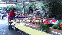 Le journal - 12/09/2019 - SECHERESSE Des légumes plus chers