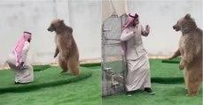 Jovem de 20 anos tem um urso em casa e brinca como se fosse um cão