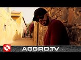 ZIGGY BROWN - ABER (OFFICIAL HD VERSION AGGROTV)