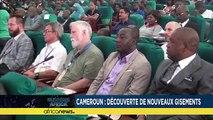 Cameroun : découverte de nouveaux gisements