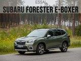 essai Subaru Forester e-Boxer (2019)