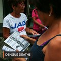 Dengue death toll climbs to 1,021 in August