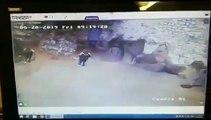 Une employée d'un Zoo se retrouve enfermée dans l'enclos d'un ours blanc !