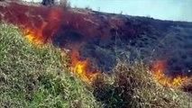 Incêndio em vegetação é combatido às margens da rodovia PR-486