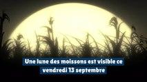 Une lune des moissons est visible ce vendredi 13 septembre