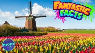 NETHERLANDS! — Fantastic Facts