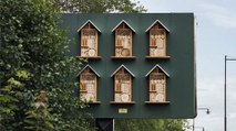 McDonald's Sweden Is Putting Beehives in Billboards