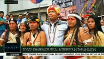 Critical Moves: Pharmaceutical Interests in the Amazon