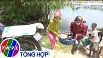 THVL | Hơn 60 tấn cá nuôi lồng chết bất thường tại Thừa Thiên Huế