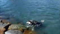 海遊びは楽しい♪
