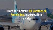 Transport aérien : Air Caraïbes et French Bee, les exceptions françaises