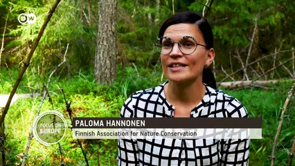 Finland: Resisting deforestation in a land a lumber | Focus on Europe