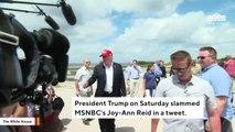 Trump Slams 'No Talent' Joy Reid On Twitter