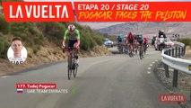 Pogacar contre le peloton / Pogacar against the peloton - Étape 20 / Stage 20 | La Vuelta 19