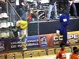 Coupe de la Ligue de HandBall :: Billy et Foxy en action
