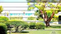 A vendre - Appartement - Villeneuve Loubet (06270) - 2 pièces - 38m²