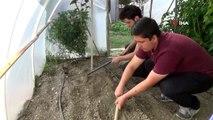 Meslek lisesi öğrencileri okul bahçelerine akıllı sera kurdu